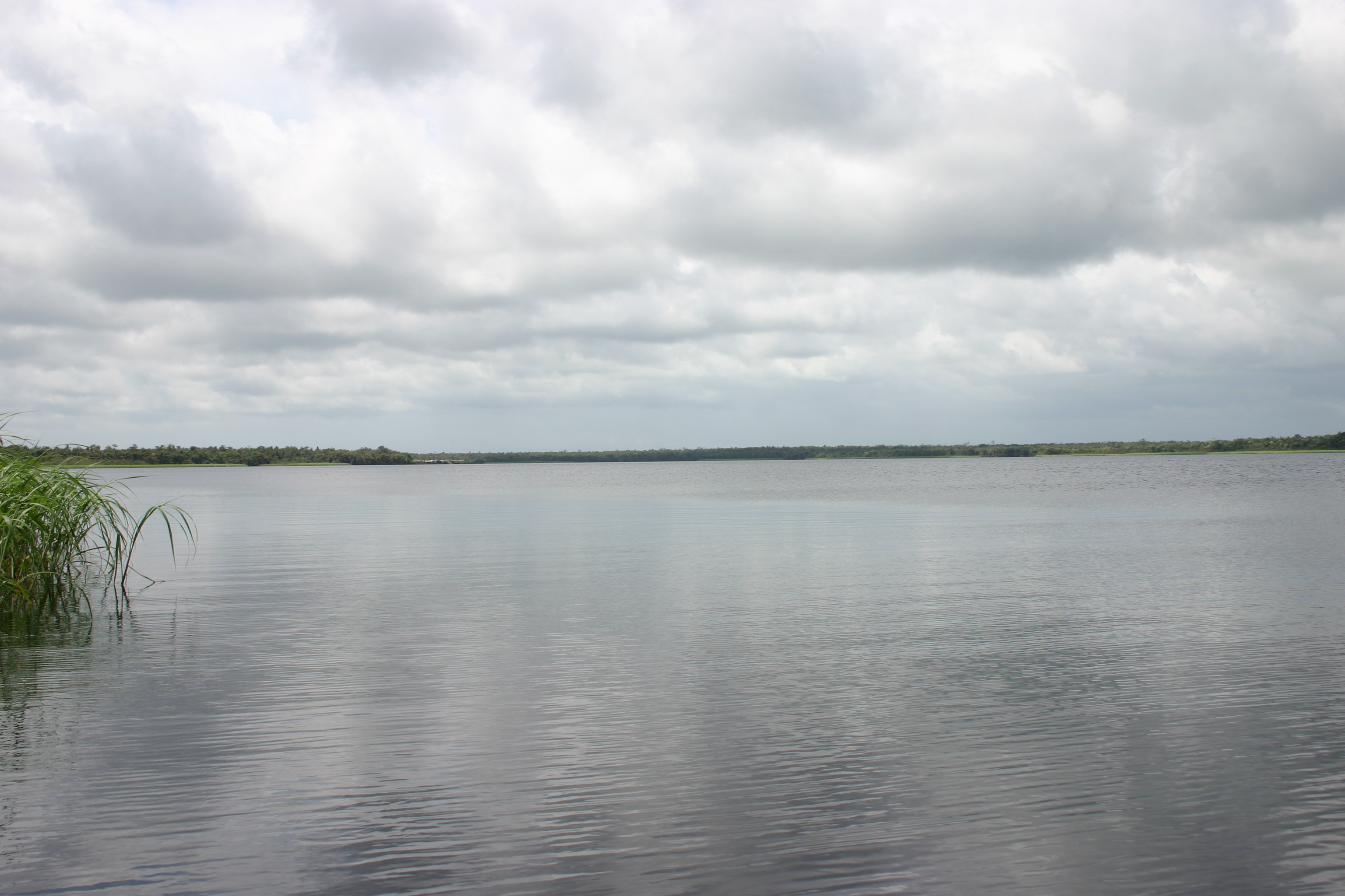Lake Tadane, in Western Ghana. Just beautiful isn't it? Elwin takes you close enough to paradise each time!
